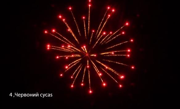 4″ Червоний cycas